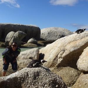 Boulder Beach- Penguin Beach