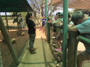 Intern speaking to guests at cheetah center